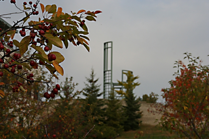 bell-tower-with-fall-leaves