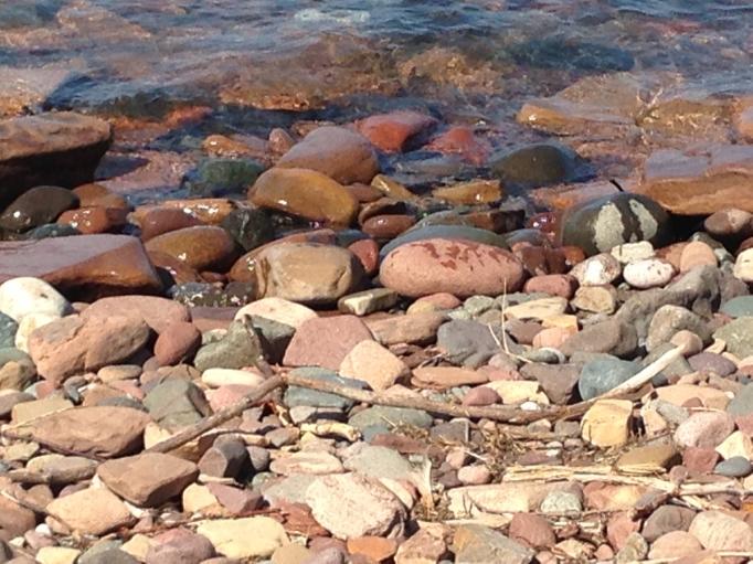 amy carr rocks